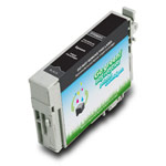 Compatible Epson* 69 (T069120) Standard Capacity Black Ink Cartridge